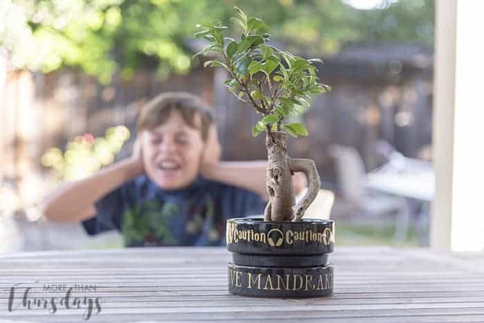 harry potter diy crafts
