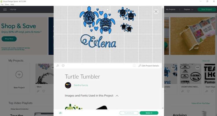 Turtle Tumbler